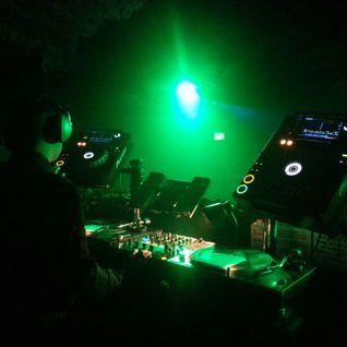 Bass'Flo - Into deeper Horizons (LIVE DJ MIX) 2014