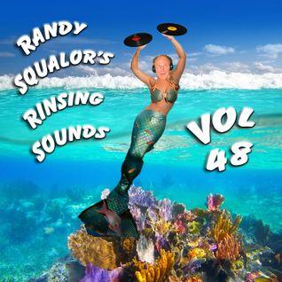Rinsing Sounds Vol 48