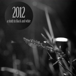 2012 - a study in black and white