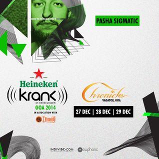 KRANK Festival 2014 podcast - Pasha Sigmatic