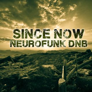 Neurofunk / Techstep Mix ( Mixed live by Since Now )