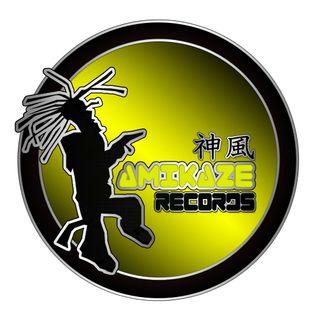 DJ Jaybee - Kamikaze records - Gambla - $ty-Lee - Fiber - Globaldnb - Dubplate Set