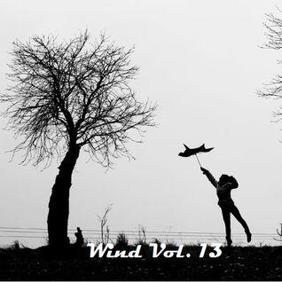 Wind Vol. 13