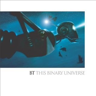 BT - This Binary Universe
