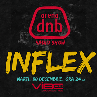 Arena dnb radio show - vibe fm - mixed by INFLEX - December 30th 2014