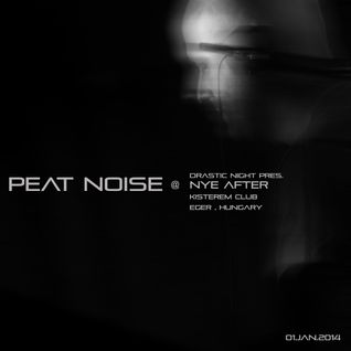 Peat Noise @ NYE After , Kisterem, Eger (Hungary) (01.JAN.2014)