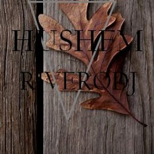 HushFm - world dance music vol.035