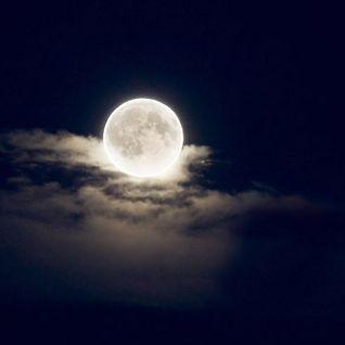 Green Reaction - Full Moon & The Mystic Reaction