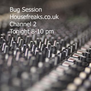 Bug Session with Miss DL & special guest Zimfella