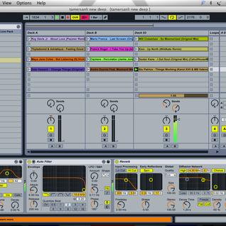 TamerSanli - Deep Sounds Essential Mix 010