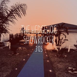 The Hedgehog - Showrocker 305 - 27.10.2016
