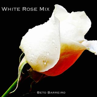 White Rose - Mix