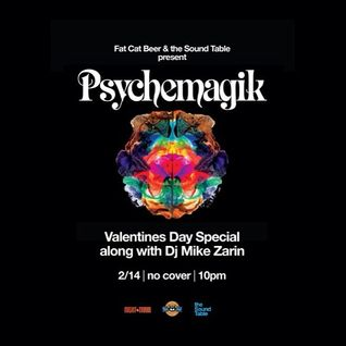 Mike Zarin - Opening Set for Psychemagik [2.14.13]