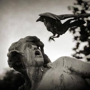 Master Corvus' Dream