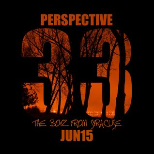 33. Perspective