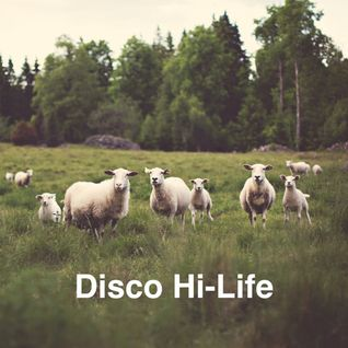 Disco Hi-Life / August 2015 (Burçin Ergünt Live Set)