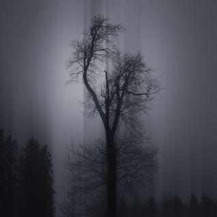 Shades of Grey III