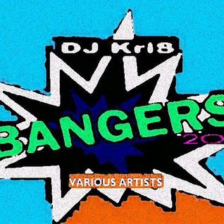 Dj Kris B A N G E R S!!-2014- VA 25 nOnStOp MixXxeD EDM Tracks  *MIXED,EDITED, ETC...BY: KRIS TEEPLE