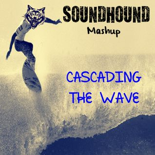 Tommy Trash & Miike Snow Feat. Thomas Gold - Cascading The Wave (S0UNDH0UND Mashup)