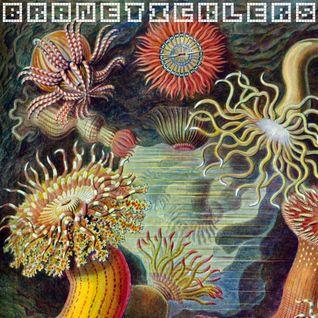 Braneticklers