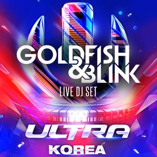 UMF KOREA 2015 - Goldfish & Blink