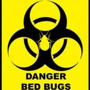The Puzzling Evidence Show - September 11th, 2015 - THE 9/11 BEDBUG SHOW!!