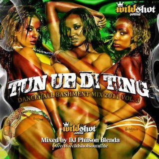 TUN UP DI TING (DANCEHALL MIX 2011) - mixed by DJ Philson Blenda