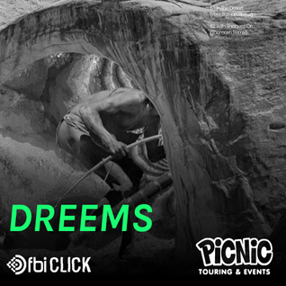 Dreems :: Exclusive Mix for Picnic on FBi Click