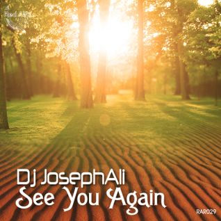 Dj JosephAli - See You Again (Clip)