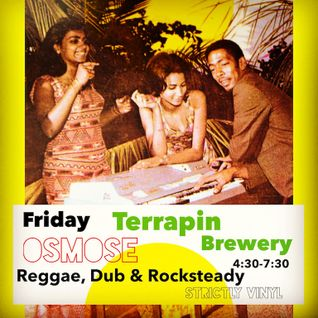 LIVE inna fine style - Osmose at Terrapin Brewery Nov 2015
