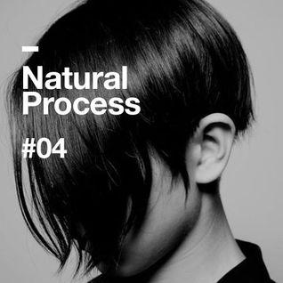 Natural Process #04