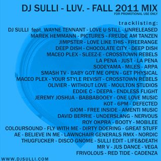 Dj Sulli - 2011 - Luv - Dj Mix