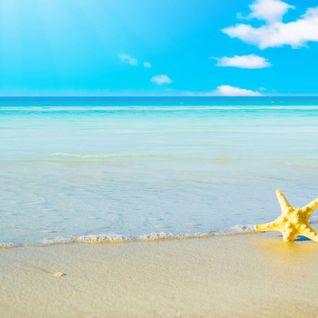 Sommer, Sonnne, Beach & B*tches