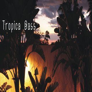 tropica bass silverback dj