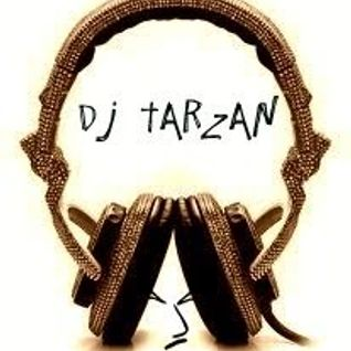 Dj Tarzan - Gyal Anthem Mix - N.A.N Mixtape