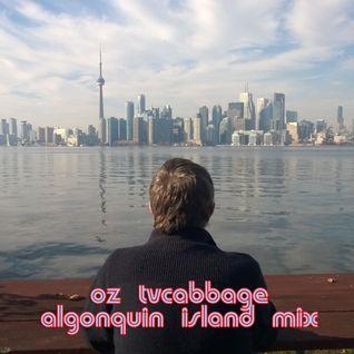 Algonquin Island Mix
