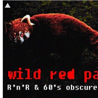 wild red panda -  60's garage & nuggets