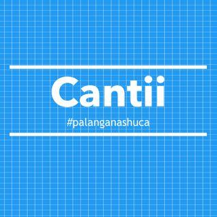 cantii - PLS 004