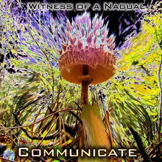 Witness To The Nagual - Communicate
