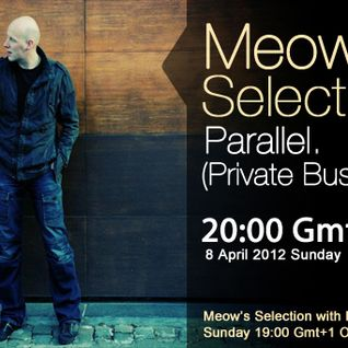 Parallel. guestmix to 28Meow's Selection 08.04.2012.