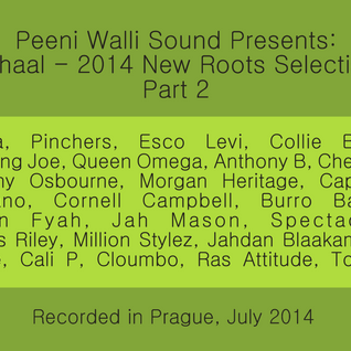 Mihaal - 2014 New Roots Selection - Part 2