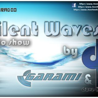 Garami & Dave Harrigan pres. Silent Waves 2013.12.11. @ HOMERADIO
