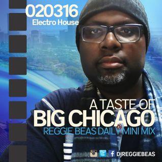 A Taste Of Big Chicago-February 3rd, 2016