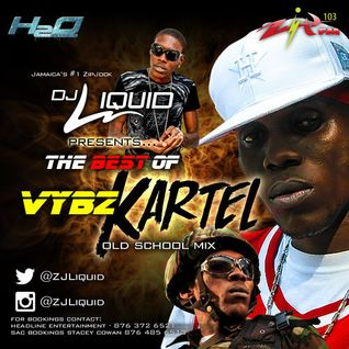 ZJ Liquid-BEST OF KARTEL MIX (oldieS)