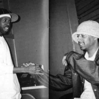 The Further Adventures of Jaylib : The Music of J Dilla and Madlib : Mixed by AllAl