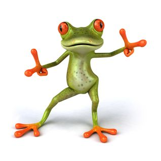 DrugsBunny - Furious Frog