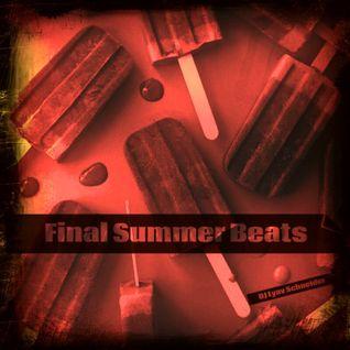 DJ Lyav Schneider - Final Summer Beats