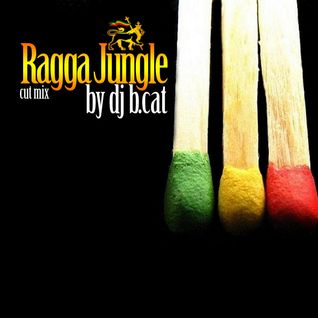 B.CAT-ragga-jungle open air cut mix