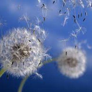 Dandelion Dust......