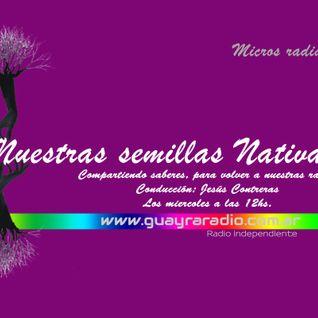 NUESTRAS SEMILLAS NATIVAS programa n°1 - GR
